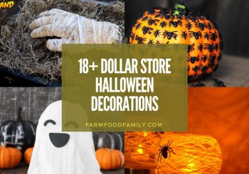 18+ Best Dollar Store Halloween-Dekorationen