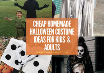 Cheap Homemade Halloween Costume Ideas: Inexpensive Costumes for Kids and Adults That Can be Made at Home
